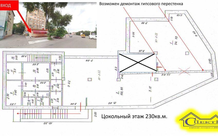 Пушкина 1 (Площадь Освобождения центр). Площадь цокольного этажа 230кв.м